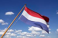 Nederland  Nijmegen  - September 2020.     Nederlandse vlag.    Foto : ANP/ Hollandse Hoogte / Berlinda van Dam