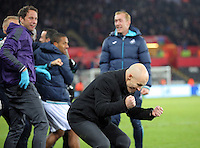 Swansea City manager Bob Bradley celebrates as Fernando Llorente of Swansea City scores his winning goal during the Premier League match between Swansea City and Crystal Palace at The Liberty StadiumSwansea, Wales, UK. Saturday 26 November 2016