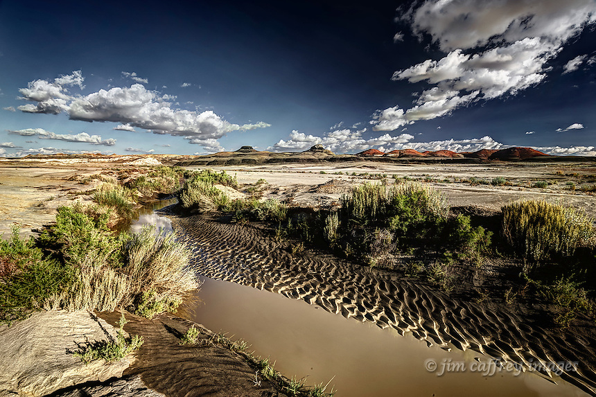 Alamo Wash in the Bisti Wilderness in northwest New Mexico after a thunderstorm.