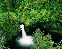 Eagle Creek Falls at Eagle Creek Punchbowl; Columbia River Gorge, OR