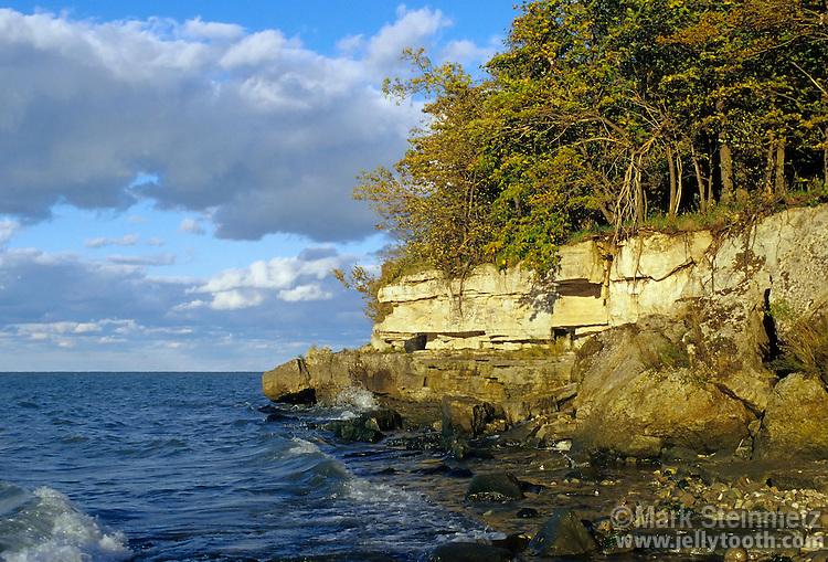 Exposure of Devonian-age Columbus limestone, north shore of Kelley's Island, Ohio, Lake Erie, USA.