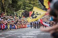 peloton up the Wijnpers<br /> <br /> Men Elite – Road Race (WC)<br /> Race from Antwerp to Leuven (268.3km)<br /> <br /> ©kramon