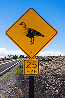 Nene Crossing sign along Chain of Craters Road in Hawai'i Volcanoes National Park, Big Island.