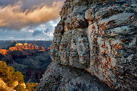 View of Grand Canyon National Park from North Rim. Lichens on rocks