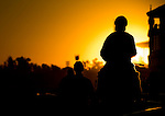 ARCADIA, CA - NOV 03: Horses walk on the track during morning workouts at Santa Anita Park on November 3, 2016 in Arcadia, California. (Photo by Douglas DeFelice/Eclipse Sportswire/Breeders Cup)