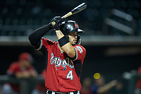 Mario Feliciano (4) of the Carolina Mudcats at bat against the Winston-Salem Dash at BB&T Ballpark on June 1, 2019 in Winston-Salem, North Carolina. The Dash defeated the Mudcats 5-4 in game two of a double header. (Brian Westerholt/Four Seam Images)