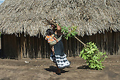 Xingu Indigenous Park, Mato Grosso State, Brazil. Aldeia Tres Irmaos (Kaiabi). Woman with baby in a traditional sling carrying branches for fuel and leaves for medicinal use.