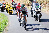 11th September 2020; Chatel-Guyon to Puy Marie Cantal, France;  SCHACHMANN Maximilian (GER) of BORA - HANSGROHE and POWLESS Neilson of EF Pro Cycling during stage 13 of the 107th edition of the 2020 Tour de France cycling race, a stage of 191,5 km with start in Chatel-Guyon and finish in Puy Marie Cantal on September 11, 2020