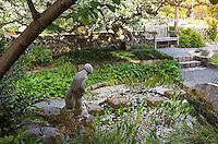 Bench overlooking shaded garden pond under flowering cherry tree in Norfolk Botanical Garden