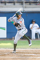 Albert Almora #20 of the Boise Hawks at bat during a game against the Yakima Bears at Yakima County Stadium on August 19, 2012 in Yakima, WA.  Yakima defeated Boise 4-3.  (Ronnie Allen/Four Seam Images)