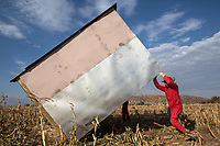 Members of the Red Ants demolish shacks that had been built illegally on private land. The Red Ants are a controversial private security company often hired to clear squatters from land and so-called 'hijacked' properties.