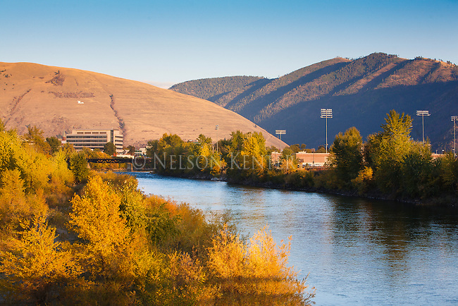 """Looking up the Clark Fork River as it flows through downtown Missoula, Montana. Trees along the river in fall color. Mount Jumbo and the """"L"""" on the east edge of the Missoula valley."""