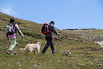 Couple walking their dog near the Matterhorn, above Zermatt, Switzerland. .  John offers private photo tours in Denver, Boulder and throughout Colorado. Year-round.