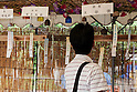 Japanese Wind Chimes Festival 2015