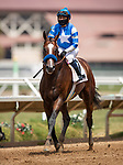 08-01-20 Shared Belief Stakes