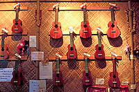 A variety of handcrafted Ukuleles on display for purchase by the descriminating musician.