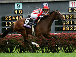 November 2, 2018: Newspaperofrecord #6, ridden by Irad Ortiz, Jr., wins the Juvenile Fillies Turf on Breeders' Cup World Championship Friday at Churchill Downs on November 2, 2018 in Louisville, Kentucky. Casey Phillips/Eclipse Sportswire/CSM