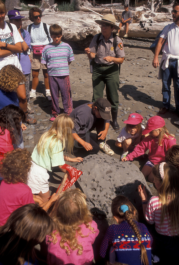AJ3658, ranger talk, Olympic National Park, Washington, Olympic peninsula, Ranger gives talk to a group of children on Rialto Beach in Olympic National Park in the state of Washington.