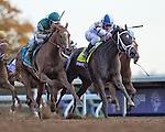 October 30, 2015 : Stopchargingmaria, ridden by Javier Castellano, outdoes Stellar Wind, ridden by Victor Espinoza, to win the Breeders' Cup Distaff at Keeneland Race Course in Lexington, Kentucky.   Zoe Metz/ESW/CSM