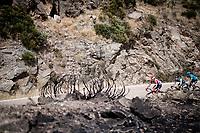 Thomas de Gendt (BEL/Lotto-Soudal) up the Puerto de la Morcuera<br /> <br /> Stage 18: Colmenar Viejo to Becerril de la Sierra (178km)<br /> La Vuelta 2019<br /> <br /> ©kramon