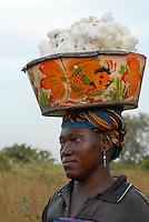 MALI , Bougouni, Fair trade und Biobaumwolle Projekt - Baumwollernte Frau Bintou Bagayoko 30 Jahre aus Dorf Faragouaran | .MALI , Bougouni , women harvest fair trade organic cotton
