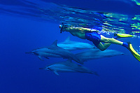 Snorkeler and Spinner Dolphin