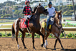 DEL MAR, CA  AUGUST 18: #1 Prince Earl, ridden by Geovanni Franco, in the post parade before the Del Mar Mile (Grade ll) on August 18, 2019 at Del Mar Thoroughbred Club in Del Mar, CA.  ( Photo by Casey Phillips/Eclipse Sportswire/CSM)