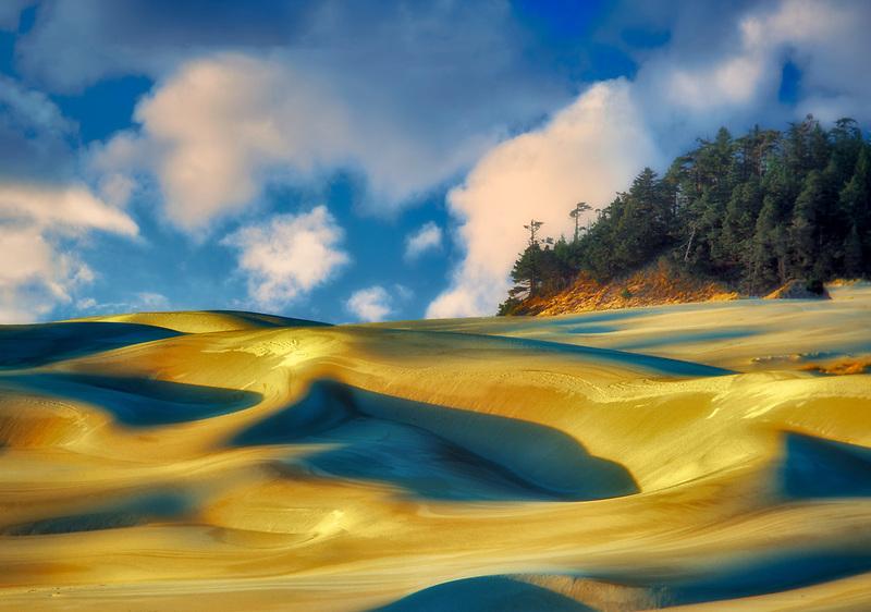 Sandunes at sunset. Oregon Dunes National Recreational Area.