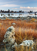 Tufta rock formations at edge of Mono Lake, South Tufta, eastern Sierras, Mono Basin National Forest Scenic Area, near Lee Vining, California, USA