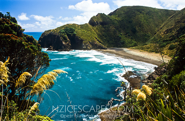 Whites Beach north of Piha township - West Auckland, New Zealand
