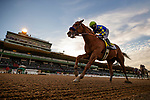 December 26, 2020: Charlatan with Mike Smith aboard wins the Malibu Stakes at Santa Anita Park in Arcadia, California on December 26, 2020. Evers/Eclipse Sportswire/CSM