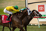 DEL MAR, CA  AUGUST 31:  #1 Vasilika, ridden by Flavien Prat, just edges out #7 Juliet Foxtrot, ridden by Drayden Van Dyke, at the wire to win the John C. Mabee Stakes (Grade ll) on August 31, 2019 at Del Mar Thoroughbred Club in Del Mar, CA. ( Photo by Casey Phillips/Eclipse Sportswire/CSM)