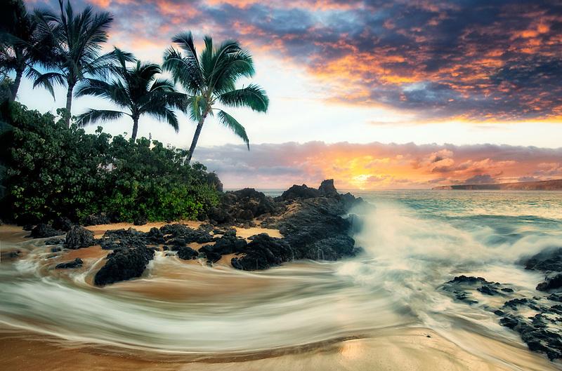 Palm trees and wave. Maui, Hawaii.