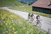 Warren Barguil (FRA/Sunweb), Thomas Voeckler (FRA/Direct Energie) & Simon Clarke (AUS/Cannondale-Drapac) trying to overbridge the gap from the peloton to race leader Tony Gallopin up ahead on the Col de Saisies (Cat1/1663m)<br /> <br /> 69th Critérium du Dauphiné 2017<br /> Stage 8: Albertville > Plateau de Solaison (115km)