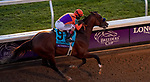 11-07-20 Breeders' Cup Classic