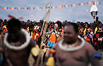 Sikhanyiso, la fille aîné du roi,dansant lors de la fête des roseaux. avec ses 15 épouse dont la dernière n'a que 19 ans, le roi Mswati III a plus d'une trentaine d'enfants.<br /> <br /> <br /> Sikhanyiso, the eldest daughter of the king, dancing during the reed dance fiest. with his 15 wifes whose last one was only 19, King Mswati III has over thirty children.
