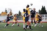 2012-13 Winter Girls' Soccer: Mountain View High School