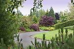Garden pathway at Oregon Gardens.  Oregon Gardens, Silverton, Oregon, USA, an 80 acre botanical garden in the Willamette Valley.  Windy day.  Hiking trail in garden.