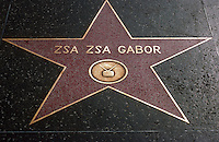 Zsa Zsa gabor's star on Hollywood Boulevard. California.