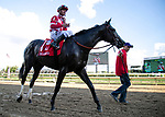LOUISVILLE, KY. Serengeti Empress (Alternation x Havisham) trained by Thomas A. Amoss, ridden by Corey J, Lanerie and owned by Joel Politi wins the 50th Running of the G2 Pocahontas Stakes at Churchill Downs on 9/15/18