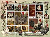 ,LANDSCAPES, LANDSCHAFTEN, PAISAJES, LornaFinchley, paintings+++++,USHCFIN0170AZ,#L#, EVERYDAY ,vintage,stamps,puzzle,puzzles
