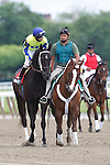 June 8, 2013. Always in a Tiz, David Cohen up, joins the post parade before the Easy Goer stakes. #2 Power Broker, Rosie Napravnik up, wins race six, The Easy Goer, one mile and three sixteenths, for three-year-olds. Belmont Park, Elmont, New York (Joan Fairman Kanes/Eclipse Sportswire)