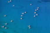 Ile des Pins, pirogues mélanésiennes