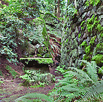 """Rock table next to stone cabin wall in deep forest.  """"Portland's Secret Garden"""",  Leach Garden was established by JOhn and Lilla Leach in the 1930's.  The Garden continues as a public place of respite and native northewest botanical display.  Operated by the city of Portland, Oregon.."""