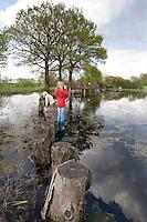 Kinder balancieren über Baumstämme in einem Tümpel, Teich und beobachten Tiere