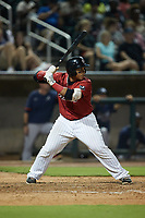 Xavier Fernández (34) of the Birmingham Barons at bat against the Mississippi Braves at Regions Field on August 3, 2021, in Birmingham, Alabama. (Brian Westerholt/Four Seam Images)