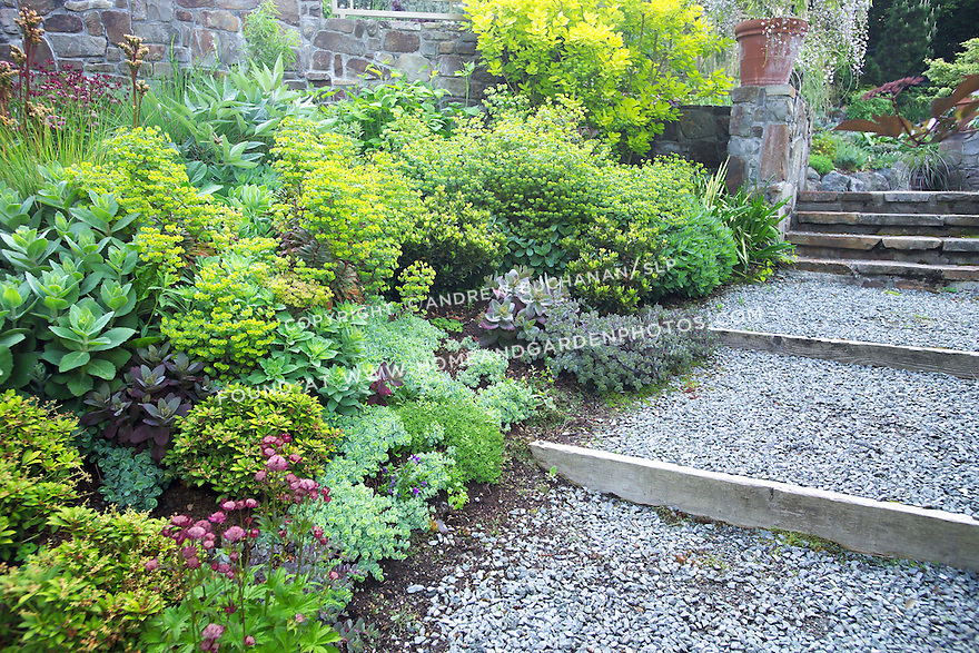 Mixed border on a slope