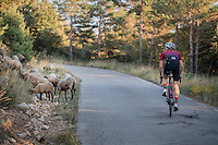 crossing some locals up the Mare de Déu del Mont climb at dusk<br /> <br /> Girona / Spain
