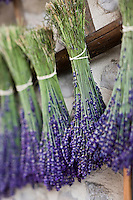 Europe/France/Rhône-Alpes/26/Drôme/Nyons: Distillerie artisanale Bleu Provence  ou Philippe Soguel distille  des huiles essentielles bio , dont la lavande