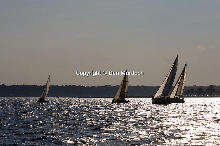 Sailboats in the setting sun